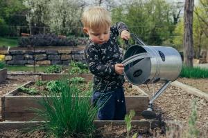 Ein Junge gießt Pflanzen in einem Garten.