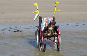 Rollstuhl steht am Strand im Wasser ohne Fahrer